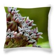 Milkweed Pink Throw Pillow