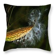 Milkweed Pod Throw Pillow
