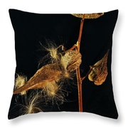 Milkweed Pods Throw Pillow