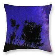 Milky Way And Silhouette Trees At Bruneau Dunes State Park Idaho Throw Pillow
