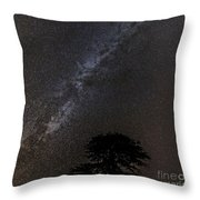 Milky Way And Tree Throw Pillow