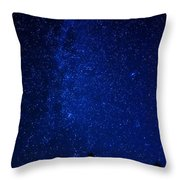 Milky Way And Trees Throw Pillow