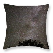 Milky Way With Perseid Meteor Throw Pillow