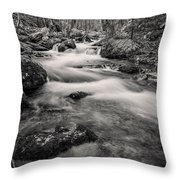 Mill Creek Monochrome Throw Pillow