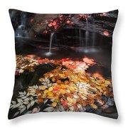 Mill Creek Throw Pillow