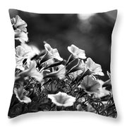 Mill Hill Inn Petunias Black And White Throw Pillow