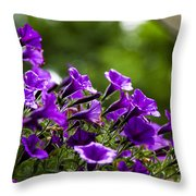 Mill Hill Inn Petunias Throw Pillow