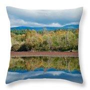 Mill Pond Illusion Throw Pillow