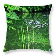 Mill Pond Reflections Throw Pillow