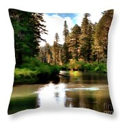 Millers Creek Painterly Throw Pillow