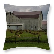 089 Millersburg Ohio Throw Pillow