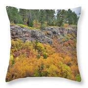Million Dollar Highway Fall Color Throw Pillow