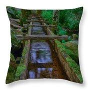 Millrace Throw Pillow