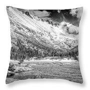 Mills Lake Monochrome Throw Pillow
