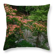 Mimosa On The Dan River Throw Pillow