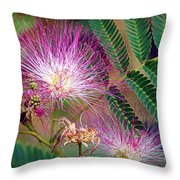 Mimosa's First Blooms Throw Pillow