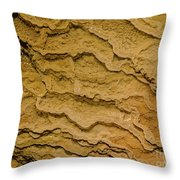 Minerva Terrace Detail 7 Throw Pillow