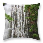 Mingo Falls Closeup Throw Pillow