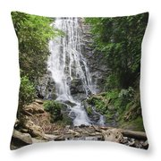Mingo Falls In North Carolina Throw Pillow