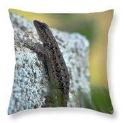 Mini Dinosaur Throw Pillow