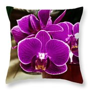 Mini Orchids Throw Pillow