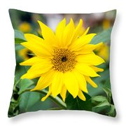 Mini Sunflower And Bud Throw Pillow