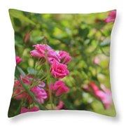 Miniature Fuchsia Roses Throw Pillow