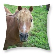 Miniature Horse Throw Pillow