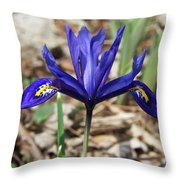 Miniature Iris Throw Pillow