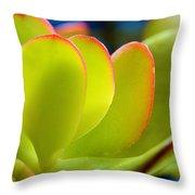 Miniature Jade Leaves Throw Pillow