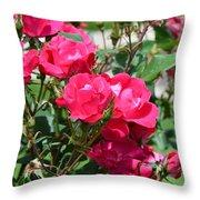 Miniature Roses Throw Pillow