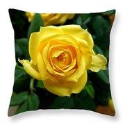 Miniature Yellow Rose Throw Pillow