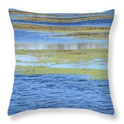 Brazos Bend Wetland Abstract Throw Pillow