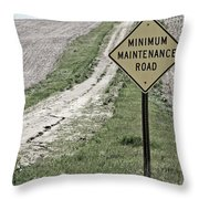 Minimum Maintence Throw Pillow