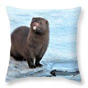 Mink Throw Pillow