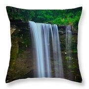 Minneopa Falls Throw Pillow