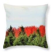 Minnesota Autumn 21 Throw Pillow