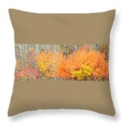 Minnesota Autumn 58 Throw Pillow