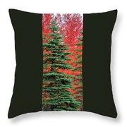 Minnesota Autumn Spruce Maple Throw Pillow