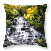 Minnihaha Falls In Autumn Throw Pillow