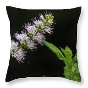 Mint Flower Throw Pillow