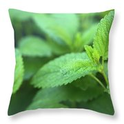 Mint Mood Throw Pillow