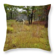 Miracle In The Meadow Throw Pillow