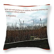 Miracle Landscape And Inspiration Throw Pillow