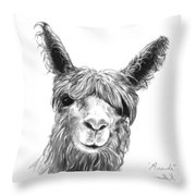 Miranda Throw Pillow