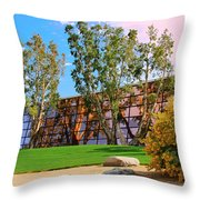 Mirror 2 Throw Pillow