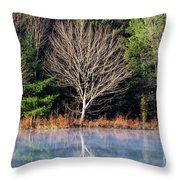 Mirror Mirror On The Pond Throw Pillow