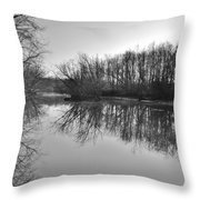 Mirror River Throw Pillow