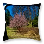 Mirrored Effect Throw Pillow