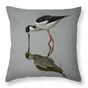 Mirrored Reflection Throw Pillow